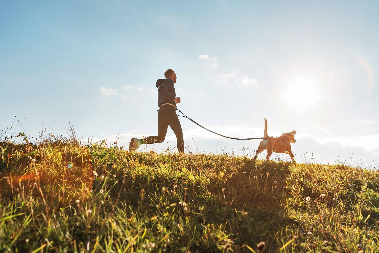 Was du beim Joggen mit deinem Vierbeiner beachten musst