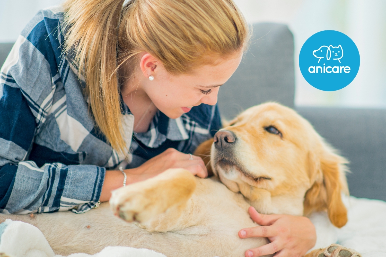 Neuer Hund – Diese Grundausstattung benötigst du