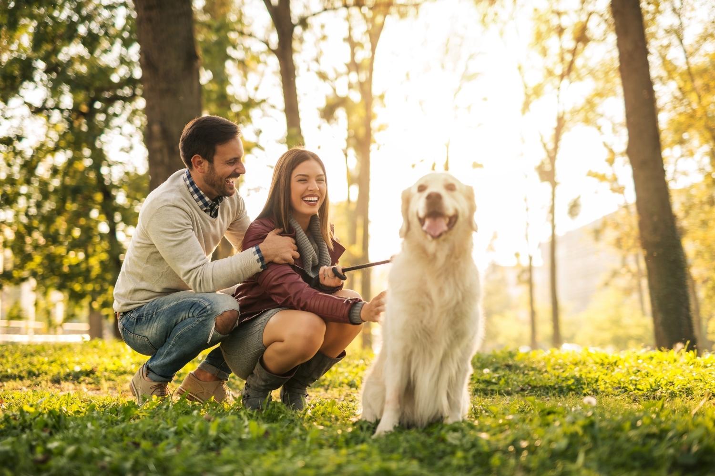 Besitzer mir Hund im Wald