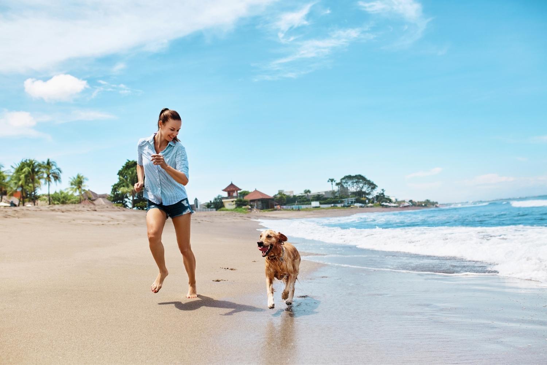 Hund und Besitzer am Strand laufen gemeinsam