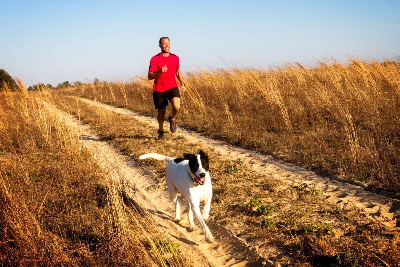 Hund und Besizer beim Joggen