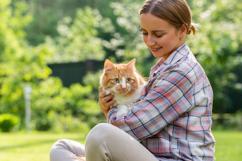 Katze mit Besitzer