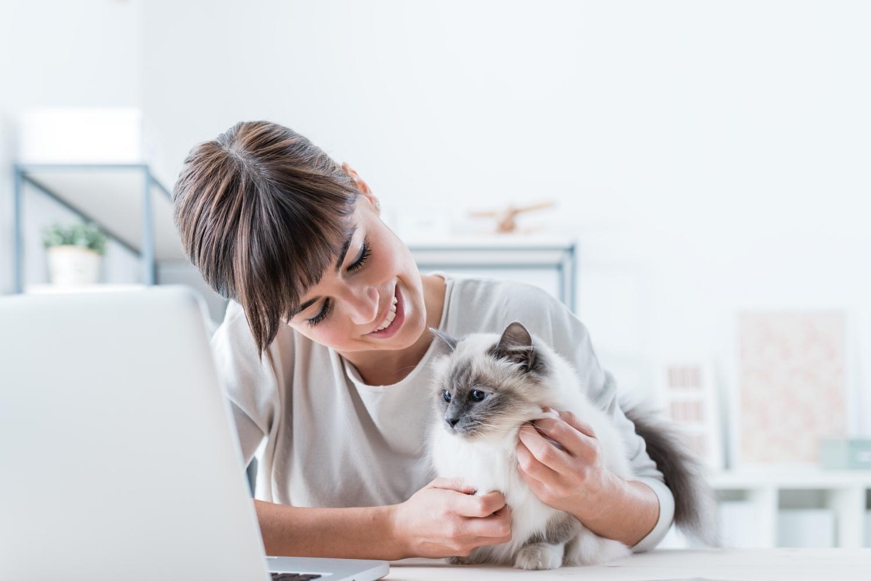 Katze mit Besitzerin